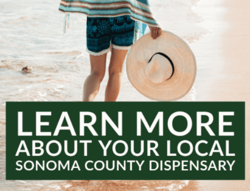 Learn More About Your Local Sonoma County Dispensary